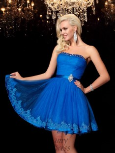 A-line Strapless Short Net Dress