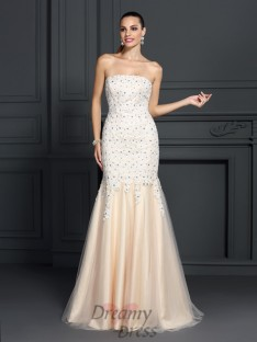 Trumpet/Mermaid Strapless Lace Sweep/Brush Train Satin Dress